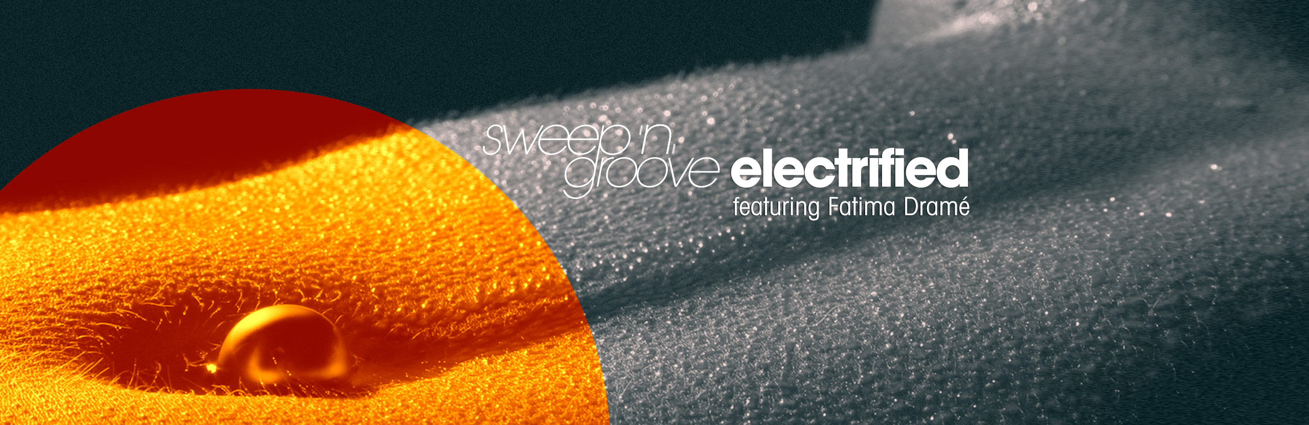 npm2013_sweepngroove-electrified