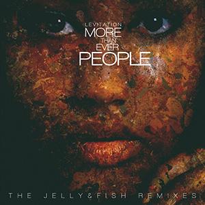 http://www.newpoolmusic.com/wp-content/uploads/2014/10/lev_mtep_remixes_jf_final.jpg